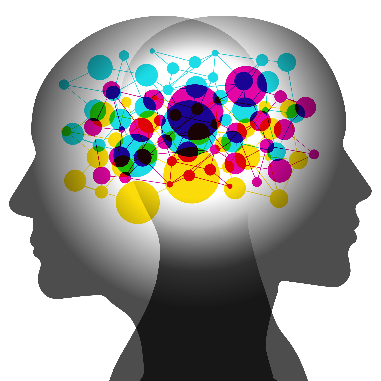 психологический мозг картинки места для дайвинга