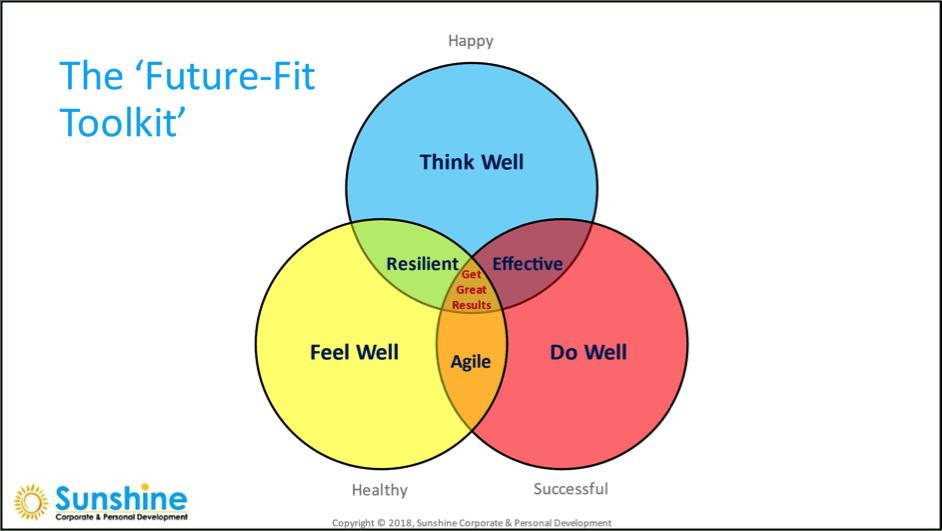 The Future Fit Toolkit diagram