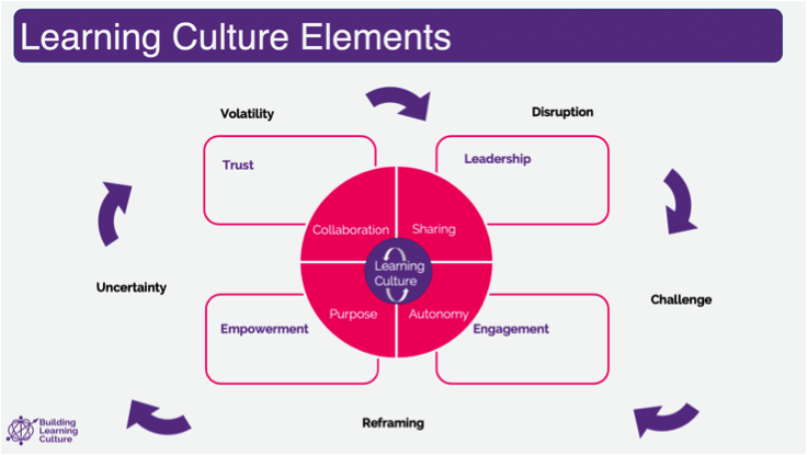diagram showing the elements of a learning culture