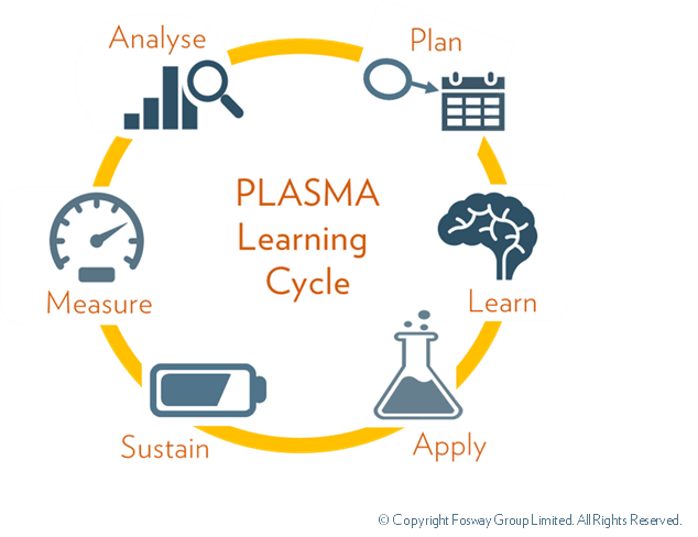 Plasma Model