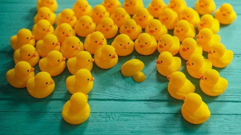 Are old-school training programmes dead ducks?