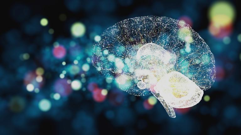 Neuroscience in learning