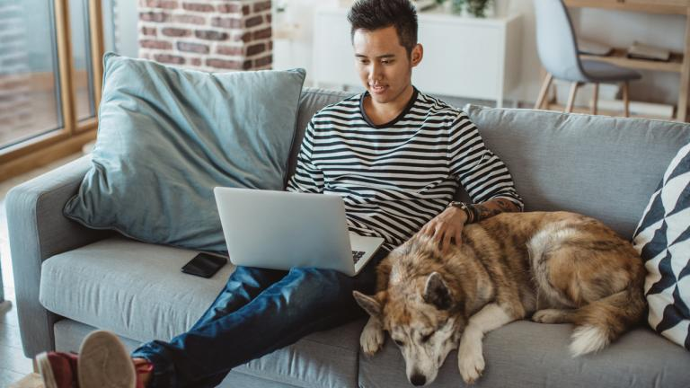 Man on laptop with dog on sofa