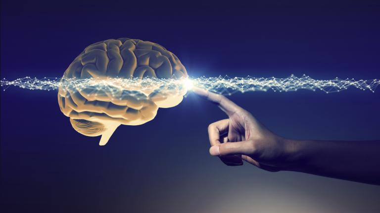 human hand touching a brain