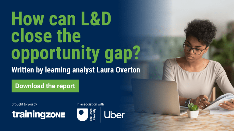 Learning as a benefit report