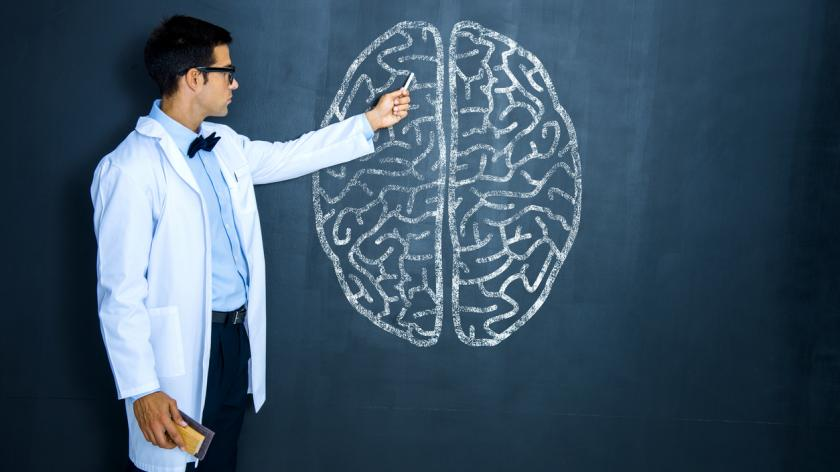 Teacher pointing to drawing of brain on chalk board