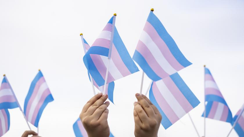 Transgender flags held by people on a demonstration