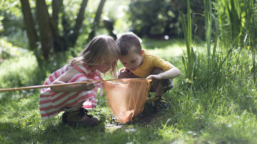 Little boy and girl looking into their fishing net at the wildlife they have found.