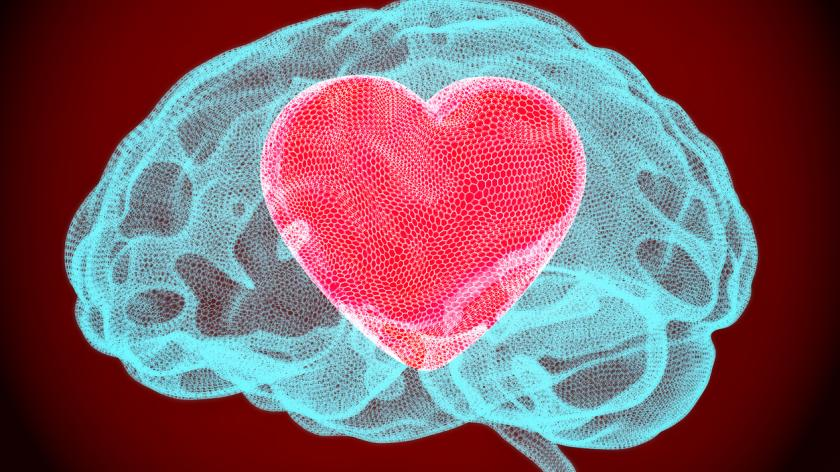 Heart inside brain, smart love concept. 3D rendering