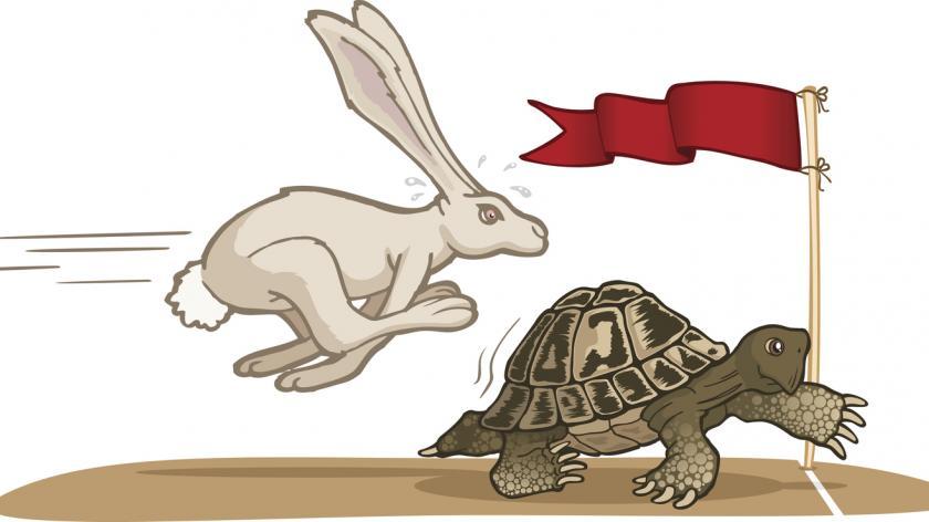tortoise and hare illustration