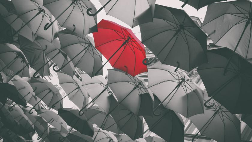 The new learning leader: stand out from the crowd