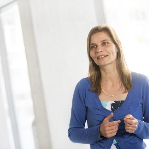 Karlien Vanderheyden, Vlerick professor